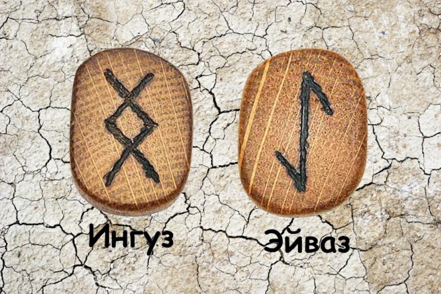 znachenie runy ejvaz tolkovanie v gadanii i sochetaniya s drugimi simvolami