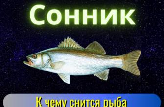 k chemu snitsya ryba tolkovanie sna